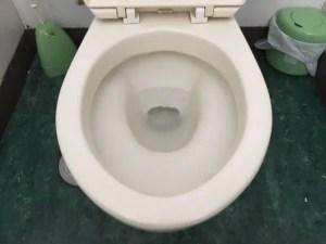 トイレに近い下水マスも確認しましょう