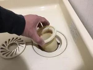 トラップ筒とホース固定筒を外します