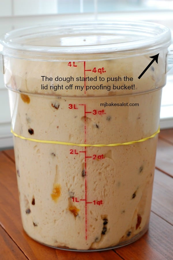 In the bulk proof, the dough started to push the lid off the proofing bucket. | mjbakesalot.com
