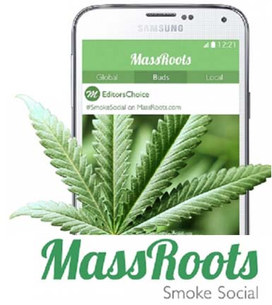 Image result for massroots""