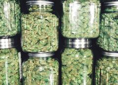 Cannabis Alert: No Pot Stock Has More Upside Than This Company