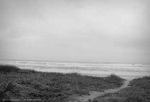 Peninsula Beach Path