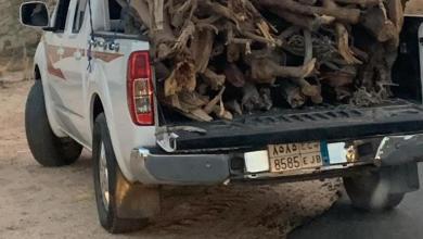 Photo of القبض على ثلاث مركبات محملة بالحطب المحلي في وادي بن هشبل