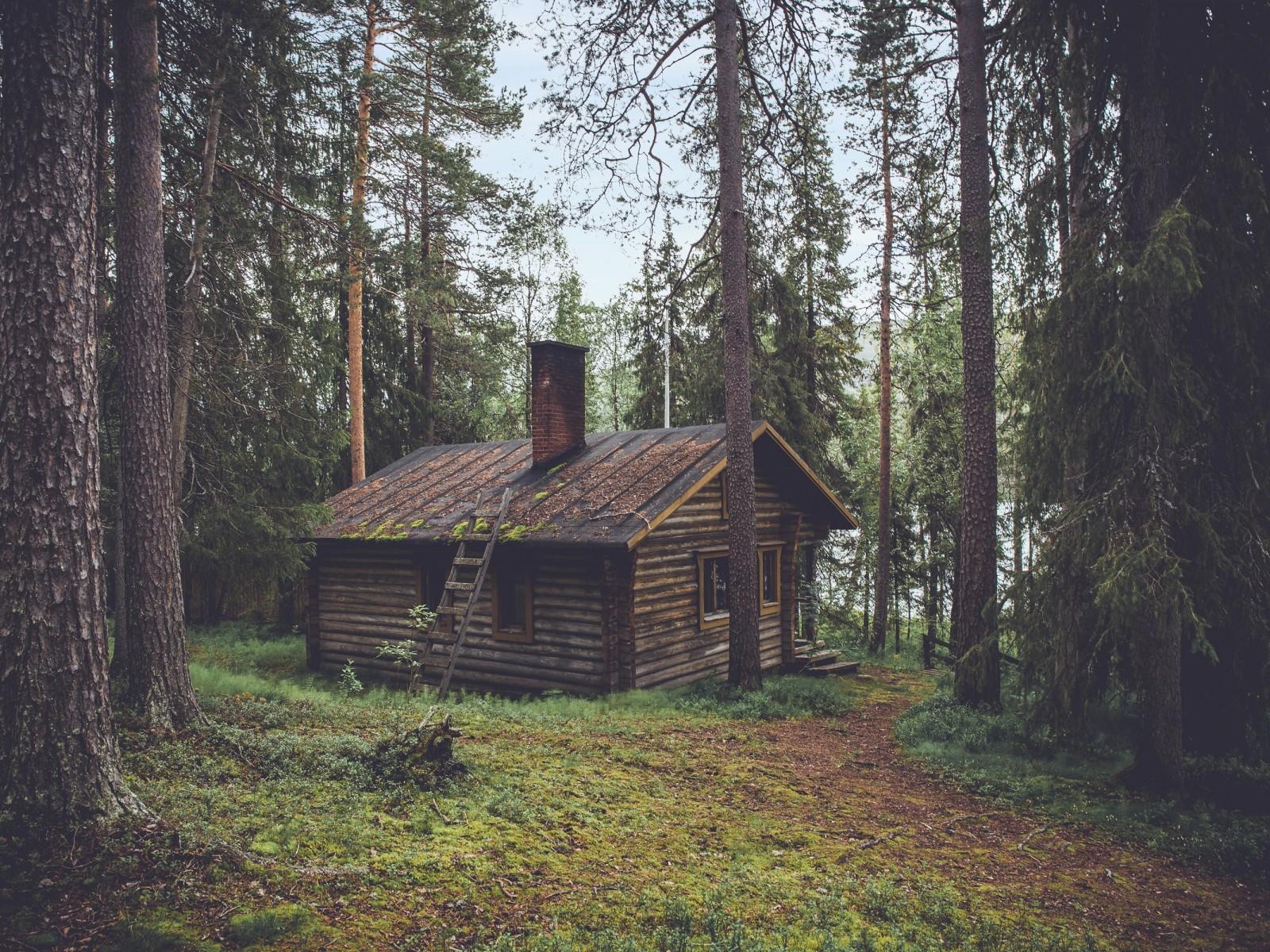 Une maison en bois massif pour une vie saine et écologique