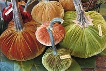 pumpkins-187962__180