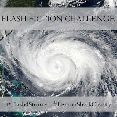 flash4storms-sig