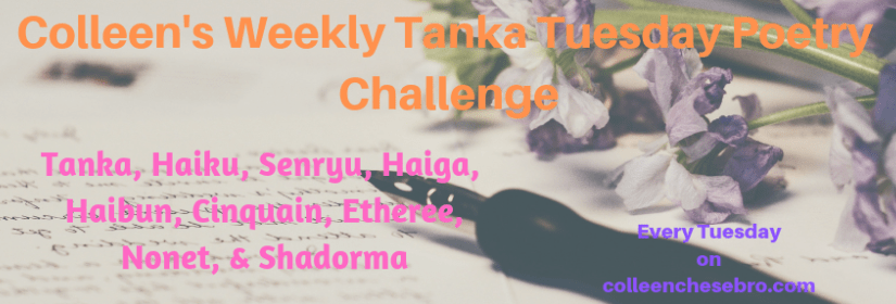 COLLEEN'S 2019 WEEKLY #TANKA TUESDAY #POETRY CHALLENGE NO. 134 #SYNONYMSONLY