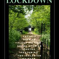 19th July - New Release: This Is Lockdown #Anthology #Compilation #Diaries #Poetry #Flash #Stories