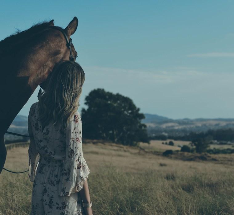 Senior portrait with horses