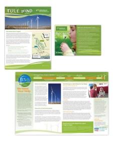 Newsletters | Tule Wind - mjobriendesign.com