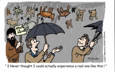 raincatdog