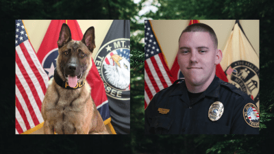 Photo of K9 Majlo & Cpl. Barth