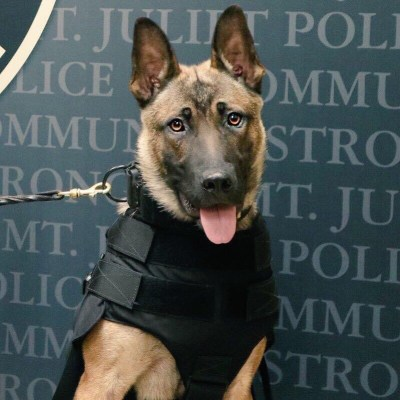 Majlo with his Ballistic Vest