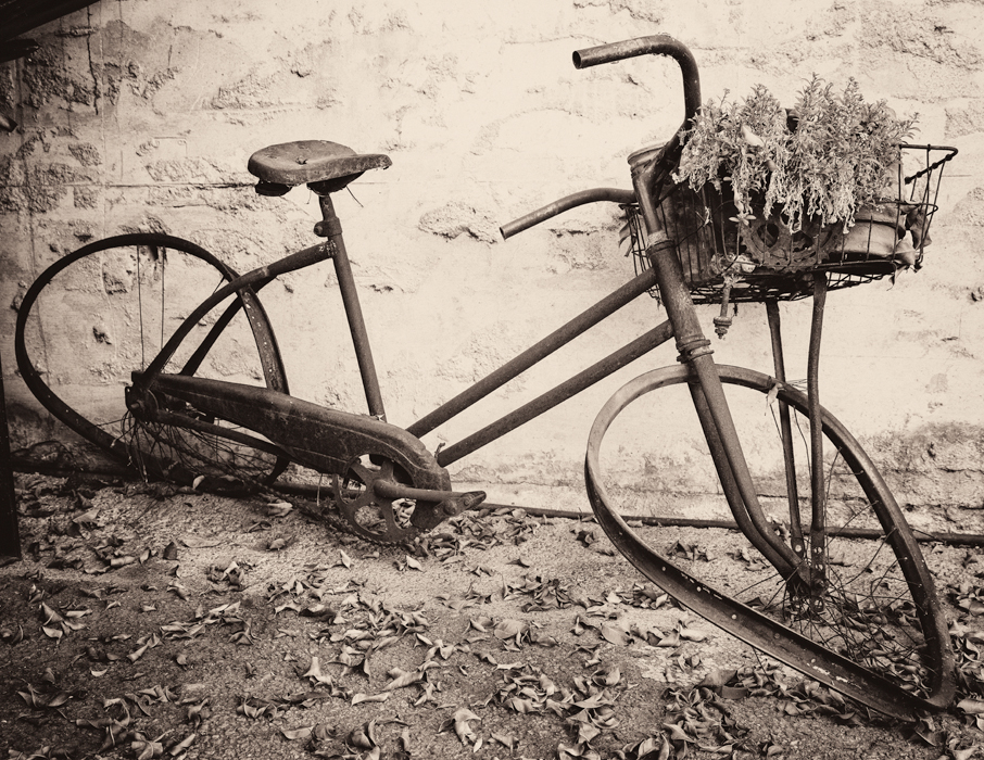 sepia toned photograph of old rusted bicycle