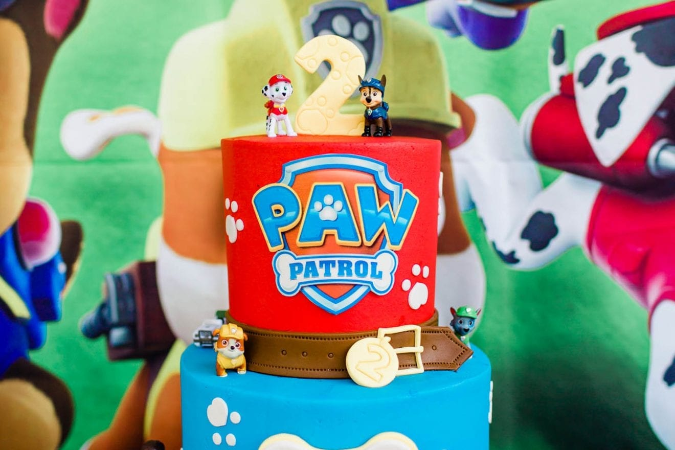 paw patrol birthday party ideas baby