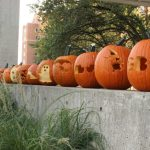 Pumpkins On Porches Students Create Jack O Lantern Templates For Families Utk College Of Architecture Design