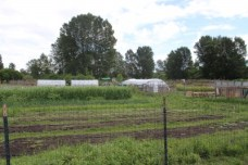 Marra Farm