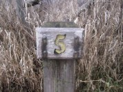 #5 is awesome!