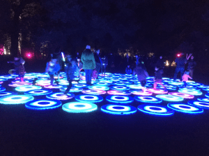 Interactive Lighting at Descanso Gardens