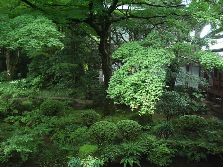 大原三千院 庭園
