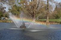 Rainbow in the fountain