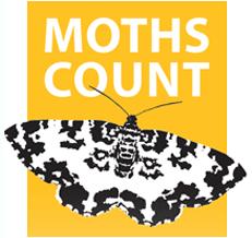 Moths Count logo