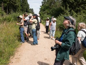 Members of the Society ©Peter Hassett enjoying the walk in Bucknell Wood 8 July 2017