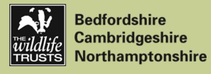 Bedfordshire Cambridgeshire Northamptonshire Wildlife Trust Logo