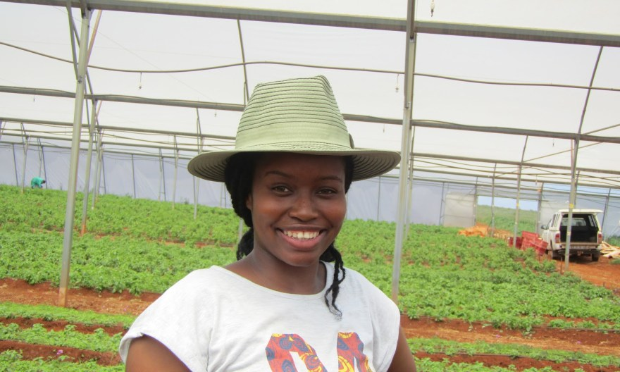The opportunities in agriculture for you to get involved in