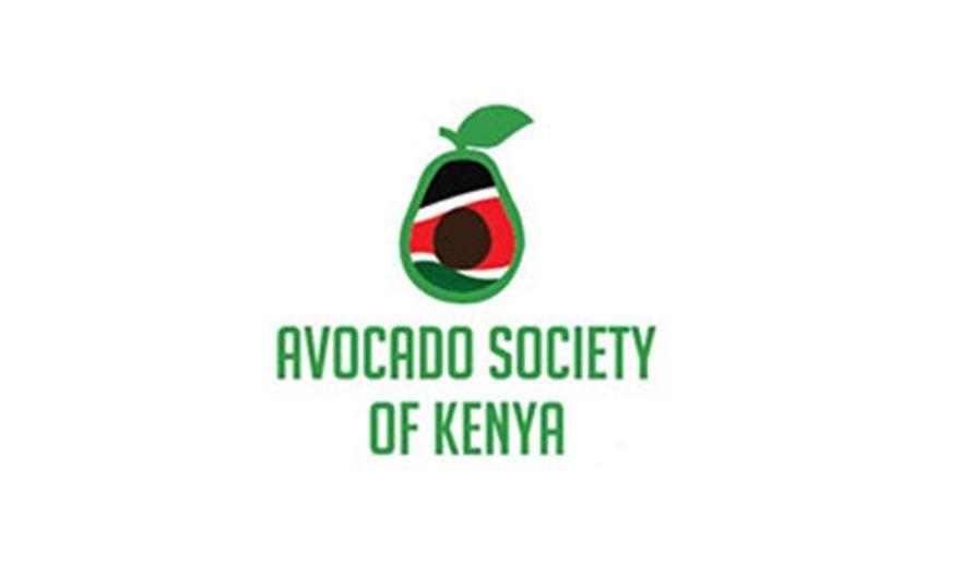avocado society of Kenya mkulimatoday.com