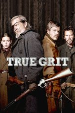 True Grit 2010 Dual Audio 480p & 720p Download in Hindi