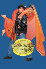 Dilwale Dulhania Le Jayenge 1995 BluRay 480p & 720p Movie Download