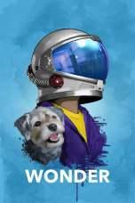Wonder (2017) BluRay 480p & 720p Full HD Movie Download