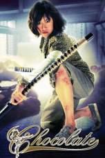 Chocolate (2008) BluRay 480p & 720p HD Movie Download