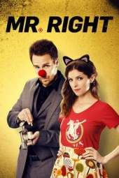 Mr. Right (2015) BluRay 480p & 720p HD Movie Download