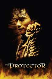 The Protector (2005) BluRay 480p & 720p HD Movie Download