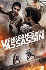 Vengeance of an Assassin (2014) BluRay 480p & 720p Movie Download