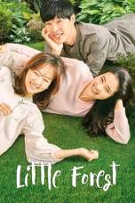 Little Forest (2018) BluRay 480p & 720p Free HD Movie Download