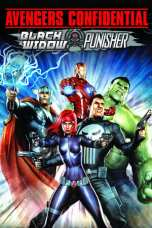 Avengers Confidential: Black Widow & Punisher (2014) Movie Download