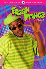 The Fresh Prince of Bel-Air Season 3-6 WEB-DL Free HD Movie Download