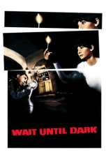 Wait Until Dark (1967) BluRay 480p & 720p Free HD Movie Download