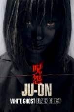 Ju-on: Black Ghost (2009) BluRay 480p & 720p Free HD Movie Download