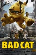 Bad Cat (2016) BluRay 480p & 720p Free HD Movie Download