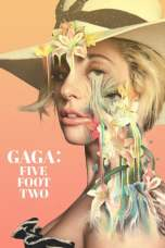 Gaga: Five Foot Two (2017) WEB-DL 480p & 720p Movie Download