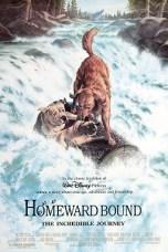 Homeward Bound: The Incredible Journey (1993) BluRay 480p & 720p