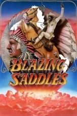 Blazing Saddles (1974) BluRay 480p & 720p Free HD Movie Download