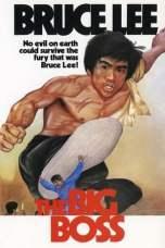 The Big Boss (1971) BluRay 480p & 720p Chinese Movie Download