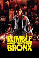 Rumble In The Bronx (1995) BluRay 480p & 720p Movie Download