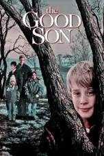The Good Son (1993) BluRay 480p & 720p Free HD Movie Download