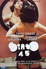 P.O. Box Tinto Brass (1995) BluRay 480p   720p   1080p Movie Download